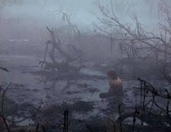 SwampSadness
